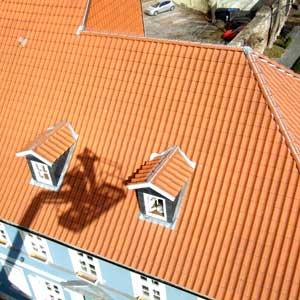 antignum - Zimmer-und Dachdeckermeisterbetrieb Erfurt - Blick auf Dach Altstadt Bad Langensalza