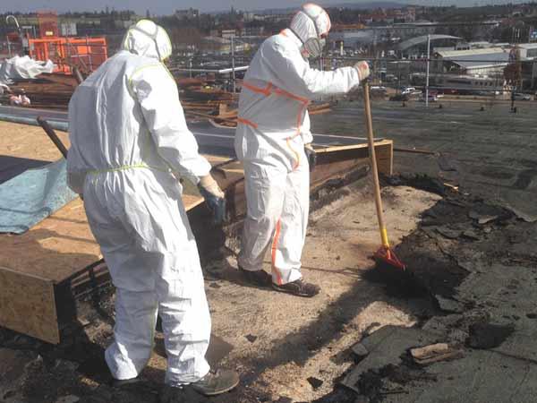 antignum - Zimmer-und Dachdeckermeisterbetrieb Erfurt - Arbeiten an einem schdstoffkontaminiertem Flachdach