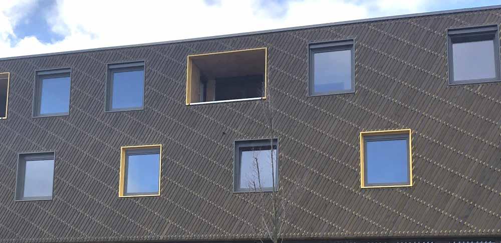 Fassade mit moderner Holzgestaltung, Pflege- und Wohnkomplex Ilmenau